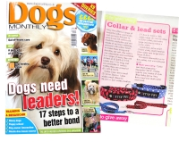 Dogs Monthly – December 2012