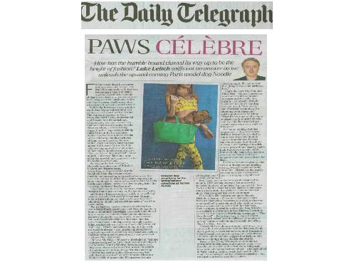 The Daily Telegraph – March 2013