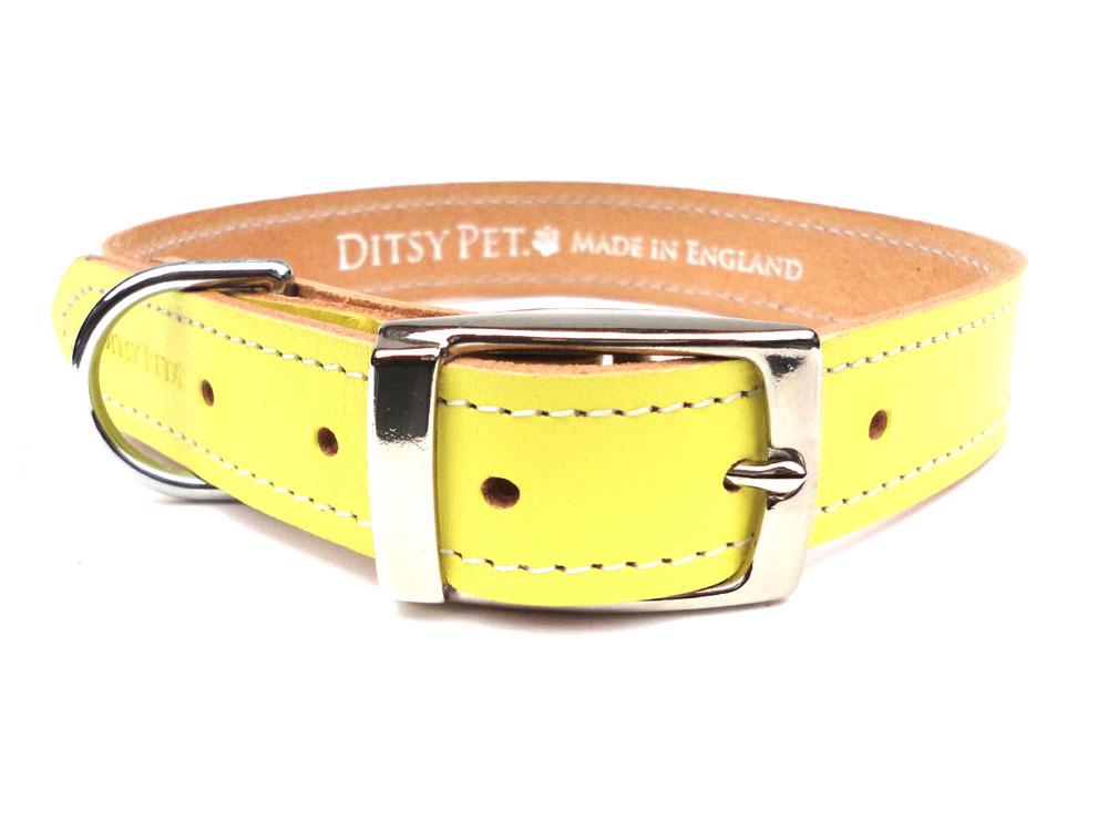 Ditsy Pet Dog Collars
